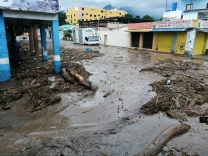 Deputies of the NA warned about the emergency in Aragua due to the flooding of the El Limón River