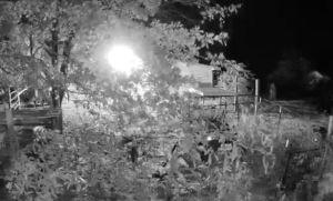 Captó con la cámara de seguridad una extraña figura acechando frente a su casa (Video)