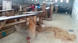 Terror y sangre en Camerún: Hombres armados ejecutan al menos seis niños en una escuela