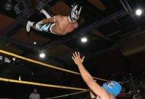 Conmoción en México: Peleador de lucha libre murió en pleno combate (Video sensible)