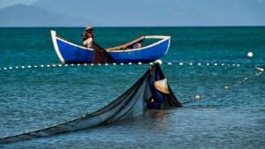Pescadores del Oriente venezolano exigen mayor seguridad ante auge del hampa (Video)