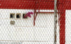 Hambre y condiciones inhumanas continúan azotando a reclusas de Uribana