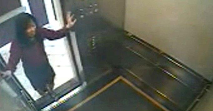 La misteriosa muerte de Elisa Liam y el terrorífico video en el ascensor de un hotel maldito