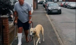 """Hombre en muletas gastó un dineral en su perro porque """"cojeaba""""… el animal solo lo imitaba (VIDEO)"""