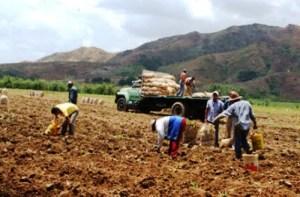 Frente en Defensa de los Productores Agropecuarios: El campo venezolano sufre la peor crisis de su historia