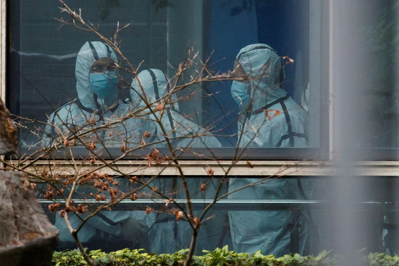 La OMS reflexiona a la próxima etapa de la investigación del origen del coronavirus