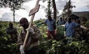 """Preocupante las muertes de 15 personas mayores en el oeste de Congo por una """"enfermedad desconocida"""""""