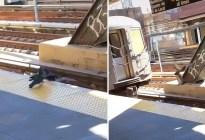 """""""Solo en Nueva York"""": Dos palomas asesinan a su """"amiga"""" empujándola a las vías del tren (Video)"""