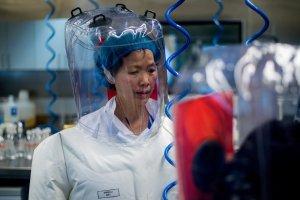 """Reconocida viróloga de Wuhan en el centro de la pandemia rompió el silencio: """"No tengo nada que temer"""""""