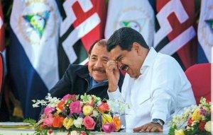 OEA expresó extrema preocupación por manipulación del órgano electoral en Nicaragua