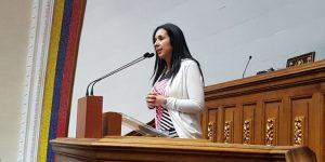 Sonia Medina pide a organismos internacionales proteger a periodistas tras amenazas de Diosdado Cabello