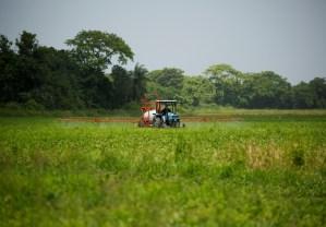 Crisis del diésel volvió más caros los alimentos producidos en Venezuela