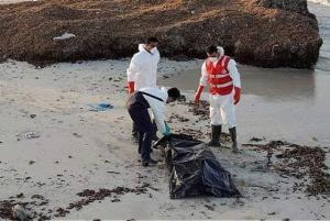 Muertas 50 personas al naufragar un bote a la salida de una playa libia, según la OIM