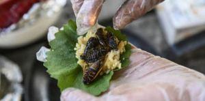 Sushi de cigarra, el crujiente manjar de un chef en EEUU ¿Te atreverías a probarlo?