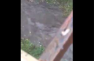 La quebrada Catuche en Caracas tras las precipitaciones de este #28Jul (Video)