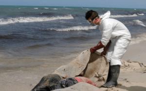 La ONU brindó un ALARMANTE balance sobre los muertos en el mediterráneo durante 2021