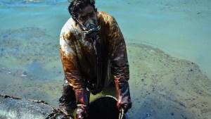 Remembering Mauritius's worst environmental disaster