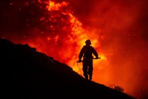 Gran incendio de California ya alcanzó las 99 mil hectáreas