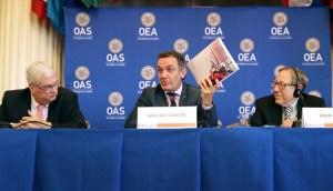 Expertos de la OEA urgen a la CPI avanzar con el caso de Venezuela