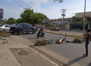 Zonas de Maracaibo cumplieron más de 100 horas sin luz y Corpoelec como si nada