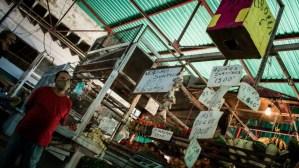 Diesel shortage strangles Venezuelan wholesalers