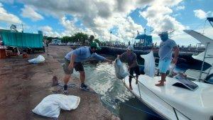 Recolectaron una tonelada y media de desechos en las islas ecuatorianas de Galápagos (FOTOS)