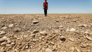 El cambio climático castiga doblemente a Medio Oriente con altas temperaturas y escasez de agua
