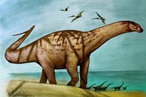 Dinosaurios de la Patagonia: Los últimos tres hallazgos que cambian todo lo conocido