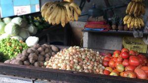 ¡Destrucción total! En un 80% cae la producción de cereales, hortalizas y frutas en Guárico