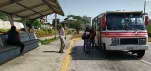 El 75% de las unidades de transporte público están paralizadas en Margarita