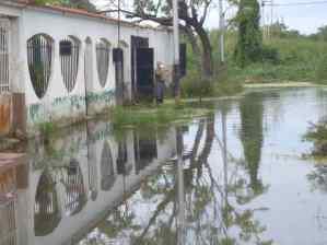 Habitantes de Maracay inundados por el Lago de Valencia, llevan 15 años esperando ser reubicados