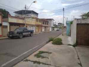 ALERTA: Misteriosa pestilencia amenaza la salud de varias comunidades en Puerto La Cruz
