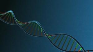 Un gen hallado en monos y ratones podría bloquear el VIH y el ébola